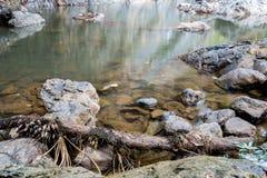 Staw siklawa w lesie z skałą w tle Obraz Stock