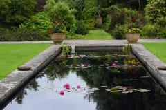 Staw, Tintinhull ogród, Somerset, Anglia, UK obraz stock