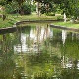 Staw w parku Fotografia Royalty Free