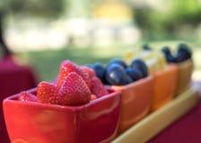 Stawberries e mirtilli in ciotole Immagine Stock Libera da Diritti