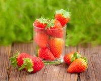 Stawberries freschi Fotografie Stock Libere da Diritti