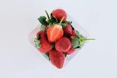 Stawberries freschi in chiara scatola Fotografia Stock