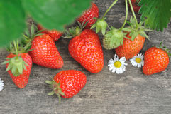 Stawberries on a plank Royalty Free Stock Image