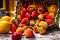 Stawberry Fotografering för Bildbyråer