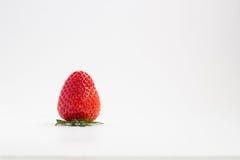 Stawberry lizenzfreie stockfotos