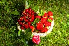 Stawberry, cereza y subió Imágenes de archivo libres de regalías