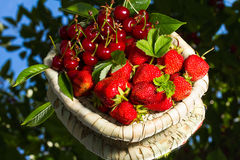 Stawberry and cherry Stock Photos