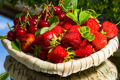 Stawberry and cherry Stock Images