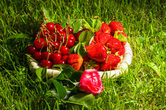 Stawberry, cherry and rose Stock Image
