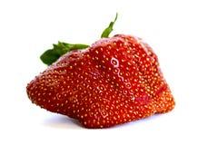 Stawberry estranho isolado no fundo branco Fotos de Stock