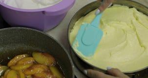 Stawiać mieszanych chałupa kurczaka i sera jajka na czekoladowym cieście Cheesecake zdjęcie wideo