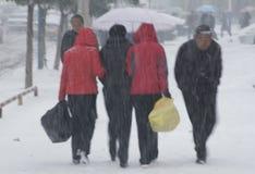 stawia czoło śnieżną awangardę Zdjęcie Royalty Free