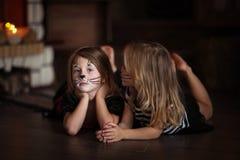 Stawia czoło obraz dziewczyn kotów ciemnego tło, pojęcie wakacyjny dar Zdjęcia Royalty Free