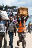 Stawowi arives przy brzeg w Afryka Obraz Stock
