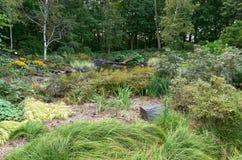 Stawowi drewna i ogród przy arboretum zdjęcia royalty free