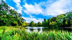 Stawy i jeziora w parkach otacza Grodowego De Haar obrazy stock