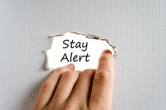 Stay alert text concept Royalty Free Stock Image