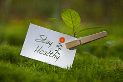 Stay Healthy! Royalty Free Stock Photo