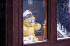 Stay at home, teddy bear