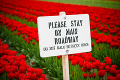 Stay off the Roadway Royalty Free Stock Photography