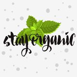 Stay Organic Rough Traced  Custom Artistic Handwritten Brush. Stay Organic Rough Traced  Custom Artistic Handwritten Brush Calligraphy Design With Mint Leaves Royalty Free Stock Photos