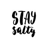 Stay salty - hand drawn lettering quote  on the white background. Fun brush ink inscription for photo overlays Royalty Free Stock Images