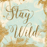 Stay Wild. Vintage background texture that reads Stay Wild in mint, cream and gold Royalty Free Stock Photo