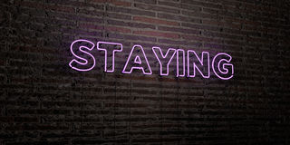 STAYING -Realistic Neon Sign on Brick Wall background - 3D rendered royalty free stock image Royalty Free Stock Photo
