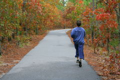 Fall colors and male jogger in sweat pants. This picture was taken in Haliburton Park, Wilmington, North Carolina. A jogger enjoys running on the path Stock Photography