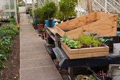 Stazione di lavoro della serra dei giardinieri Immagini Stock Libere da Diritti