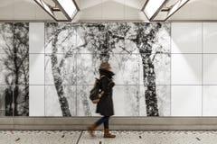 Stazione ferroviaria centrale di Bruxelles, Belgio fotografie stock