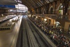 Stazione ferroviaria di Luz a Sao Paulo Immagine Stock Libera da Diritti