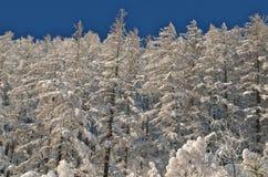 Stazione sciistica alpina a Solden nelle alpi di Otztal, Tirolo, Austria Fotografia Stock