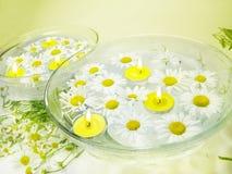 Stazione termale con i fiori della margherita e le candele profumate gialle Fotografia Stock Libera da Diritti