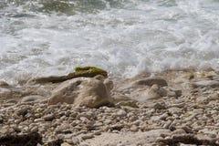 Stazione termale crimean Giro del mare riserva fotografia stock