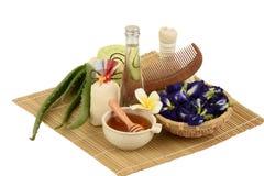 Stazione termale dei capelli di trattamenti con aloe vera, il pisello di farfalla, l'olio di cocco ed il miele Fotografie Stock