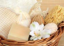 stazione termale dei prodotti naturali di bellezza Immagini Stock Libere da Diritti
