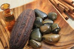 Stazione termale del cacao Immagine Stock