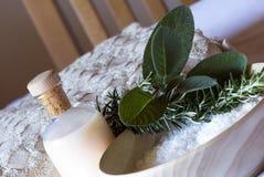 Stazione termale del rosmarino e della salvia impostata - aromatherapy Fotografia Stock Libera da Diritti