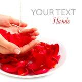 Stazione termale delle mani. Concetto del manicure sopra bianco Fotografia Stock