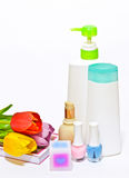 Stazione termale e aromatherapy Immagini Stock