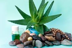Stazione termale impostata con aloe e l'olio di massaggio Fotografie Stock
