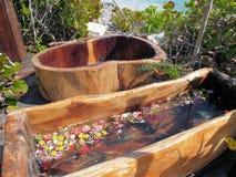 Stazione termale Mayan Immagini Stock Libere da Diritti