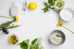 Stazione termale organica Ingredienti naturali di Skincare con argilla, olio d'oliva, unità di elaborazione fotografie stock