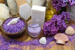 STAZIONE TERMALE - Sale marino aromatico e sapone profumato, candele e petrolio profumato ed accessori di massaggio per il massag immagini stock