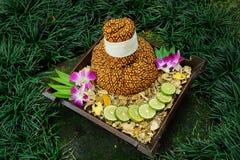 STAZIONE TERMALE tailandese Fotografia Stock