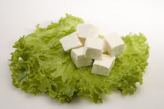 Stück des Käses oder des Paneer Lizenzfreies Stockbild