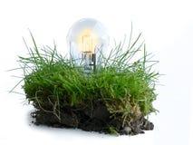 Stück Rasen mit Glühlampe, ökologische Energie Stockfoto