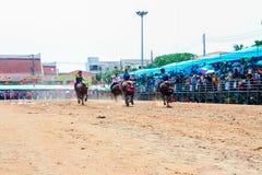 143ste Buffels het Rennen Festival op 7 Oktober, 2014 Stock Afbeelding