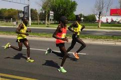 26ste internationaal de Marathonras van Belgrado Stock Foto
